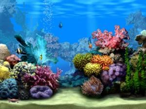 декоративные камни в аквариуме