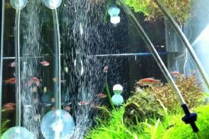 Что такое аэрация воды в аквариуме