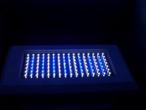 светодиоды для аквариума