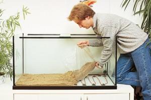 донный фильтр для аквариума
