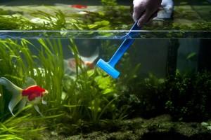 скребок для аквариума