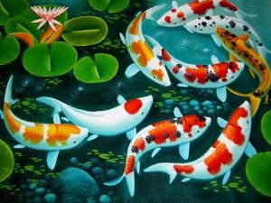 аквариумные мифы