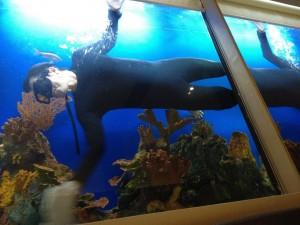 дезинфекция аквариума