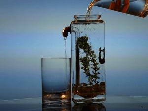 очистка воды для аквариума