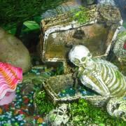 Декорации для аквариума своими руками