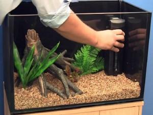 Как установить фильтр в аквариуме