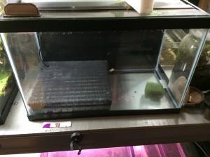как установить фильтр в аквариум