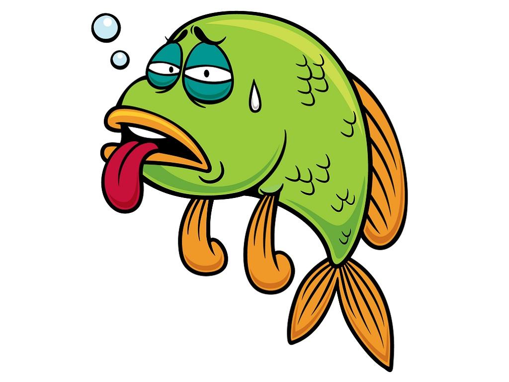 Как отличить больную рыбку от здоровой